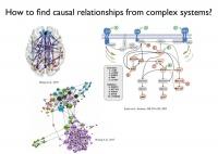 """因果发现:如何让算法成为复杂系统中的""""福尔摩斯""""?"""
