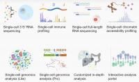 将单细胞大数据用于药物研发,「百奥智汇」完成A+轮融资