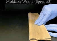 """Science封面,又是""""木头大王""""胡良兵和他的超级木材"""