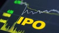 """IPO已成互联网的一面""""照妖镜""""?"""